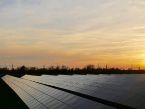 מערכת סולארית לרפת