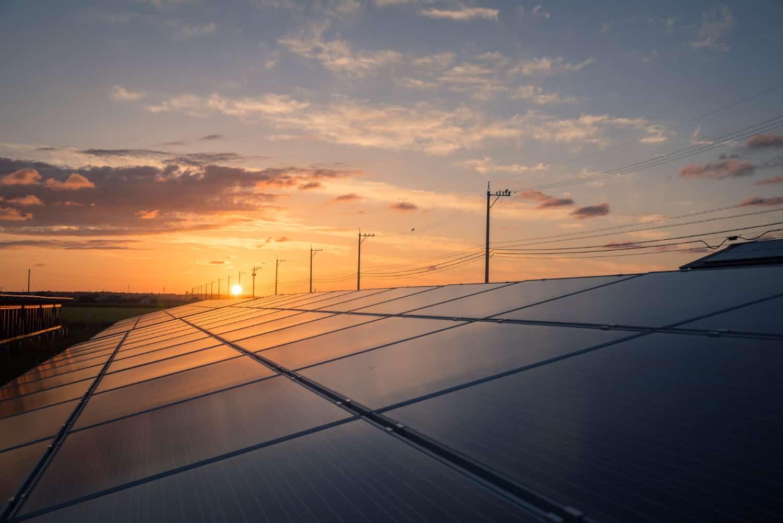 מה הם פאנלים סולאריים